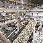 Maharashtra: Industry estimates 102 lakh tonnes of sugar manufacturing