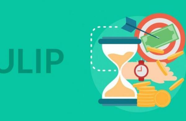 How to check and purchase ULIPs in India